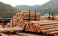 厳選された良質木材