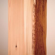 大黒柱の杉はめずらしい表情のものを